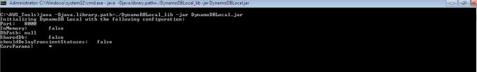 Amazon DynamoDB - output