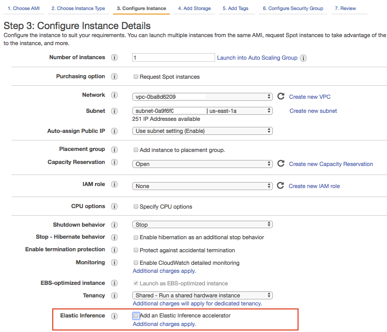 AWS EC2 Console - Elastic Inferencing