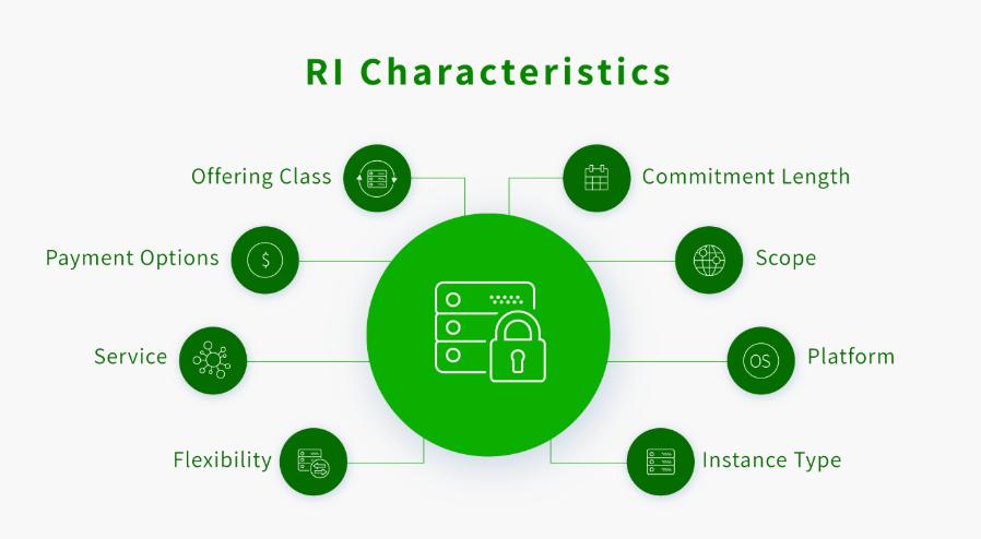 Reserved Instances Characteristics