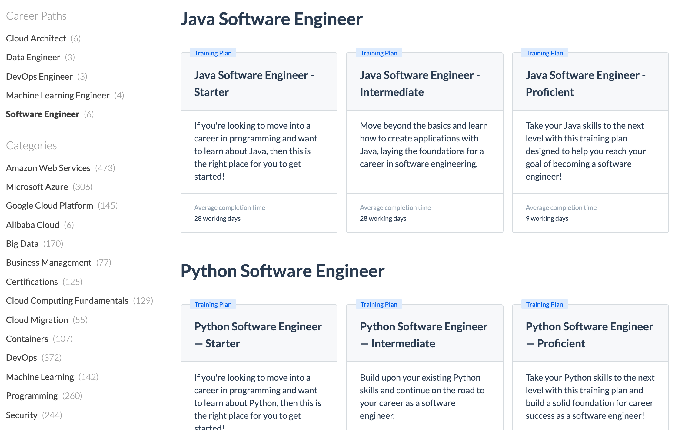 Examples of Software Engineer Career Paths