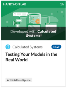 Lab - Testing Your Models in the Real World