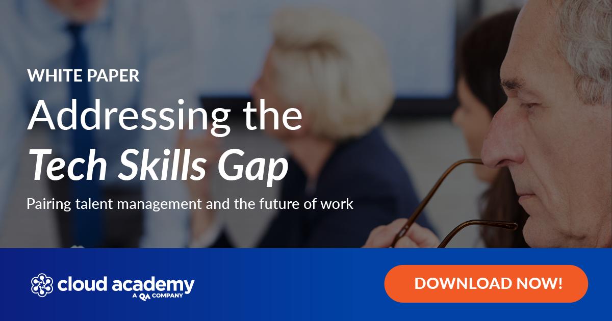 Addressing the Tech Skills Gap White Paper